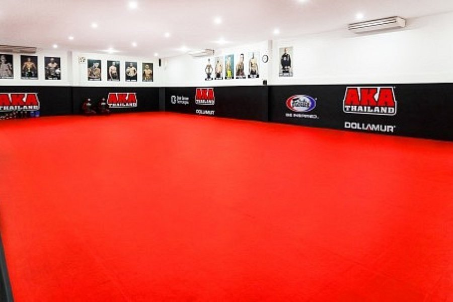 BJJ Training Area
