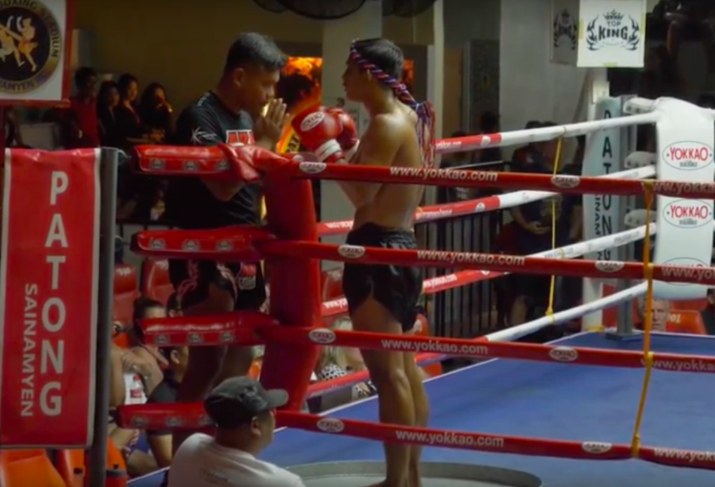 training-must-check-thai-fights